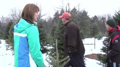 News video: christmas tree scott 6pm